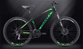Велосипед GIANT Rincon Disc Black-Green (2019)